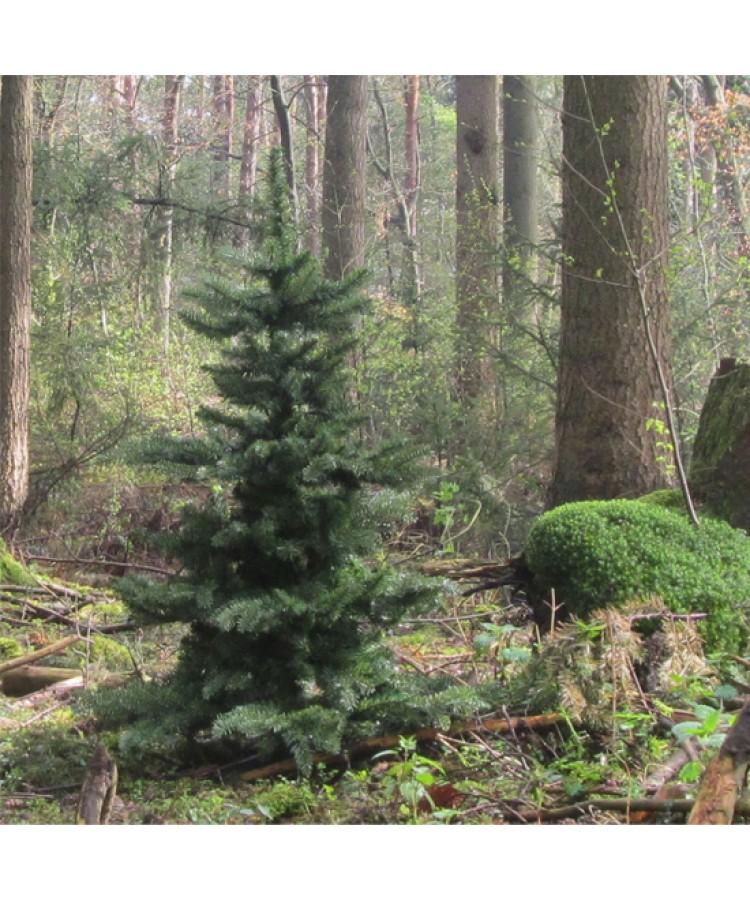 luxury-tree-180cm-natural