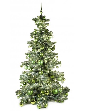 Basic Tree Refreshing Green 240cm-0